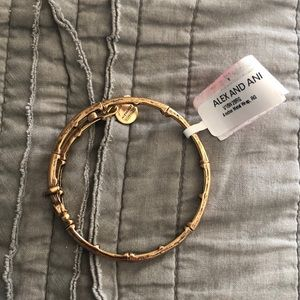 Gold anchor Alex and ani bracelet